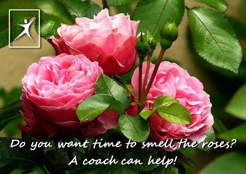 A coach can help!